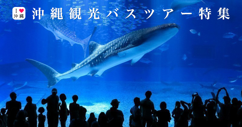 [Okinawa Sightseeing Bus tour] 10 Recommended Plans around popular spots such as Churaumi Aquarium and American Village!