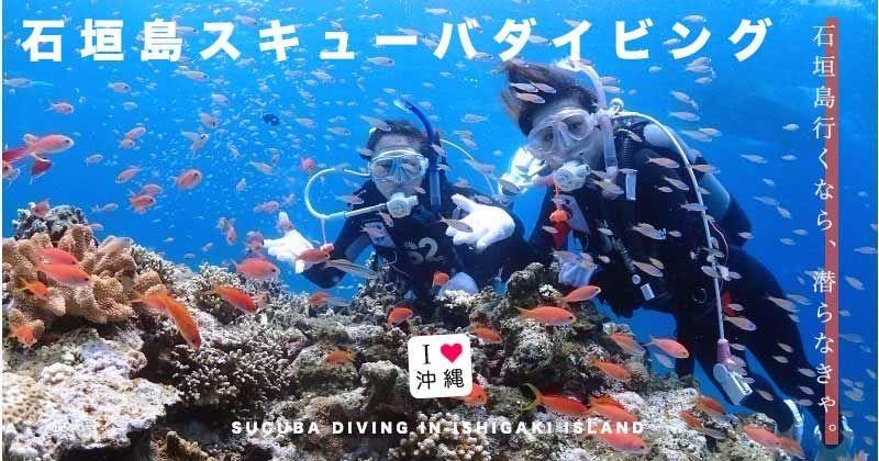 【石垣島・ダイビング(スキューバダイビング)】ウミガメやマンタと泳ぐ!初心者・ライセンス・ファンダイビング人気体験ツアー&おすすめショップ情報