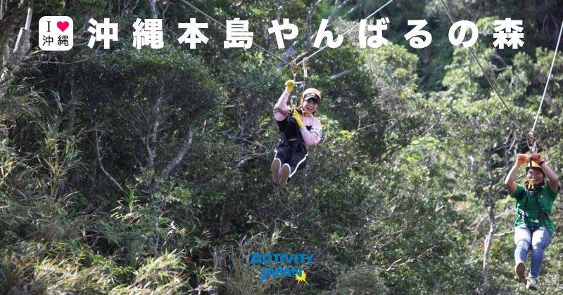沖繩/山原(Yanbaru)觀光旅遊│推薦活動/休閒/體驗/玩樂享受世界自然遺產