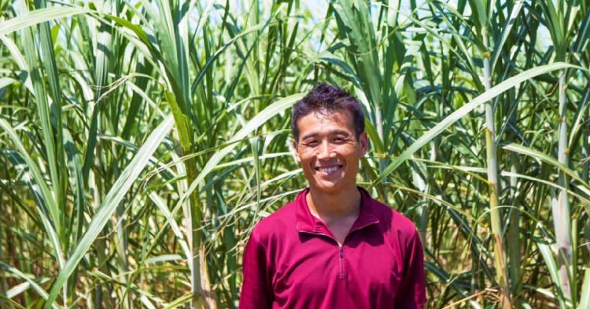 Online Tour Experience: Sugarcane cultivation in Miyakojima, Okinawa-Learn how to make brown sugar