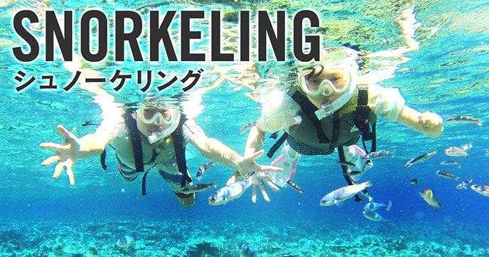 シュノーケリングは南の島だけではなく日本海もオススメなのです