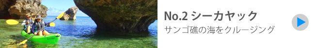 Okinawa Activities