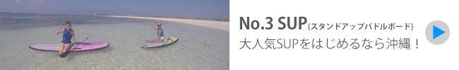 沖縄 アクティビティ