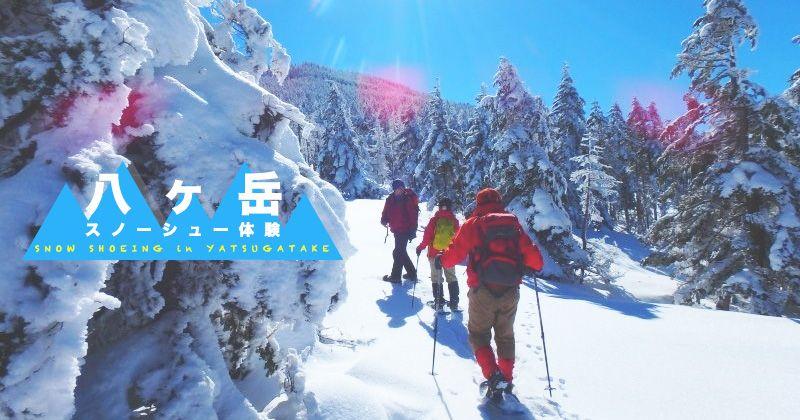【八ヶ岳・スノーシュー体験】人気絶景雪山トレッキングツアー&おすすめ予約受付ショップ情報